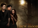 Curtis' View From the Back Row: The Twilight Saga: New Moon