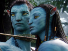 More About Avatar and Race