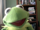 VIDEO: Kermit the Frog - It Gets Better