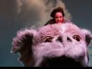 VIDEO: NeverEnding NIGHTMARE!
