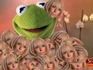 Kermit Wearing a Jacket of Lady Gaga Heads