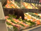 VIDEO: Baby Bear Cub in Grocery Store