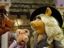 VIDEO: Miss Piggy Reads and Bashes Miss Poogy