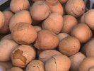 VIDEO: Urine Soaked Eggs All the Rage in China