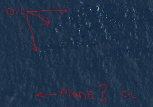 If they find the airplane because of Courtney Love, does this mean she's right about everything?