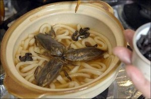 To be fair, it's not that uncommon in Asian countries to put bugs in their meals.