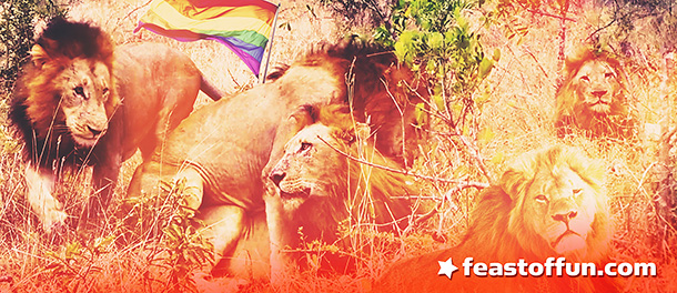 Gay pride is as natural as it gets. We couldn't show you this photo if it was humans doing the same thing.
